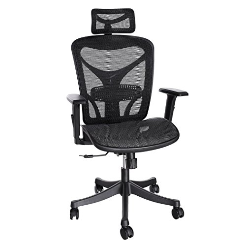 ergonomic chair for computer users