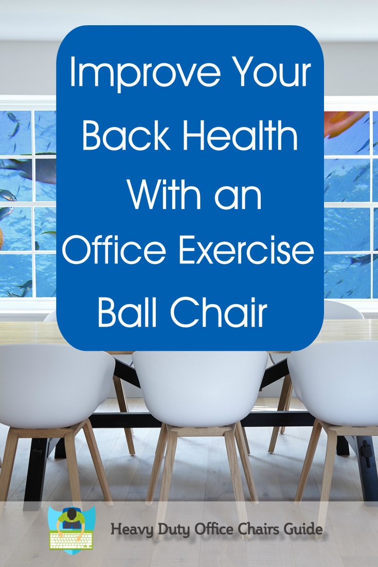 Office Exercise Ball Chair