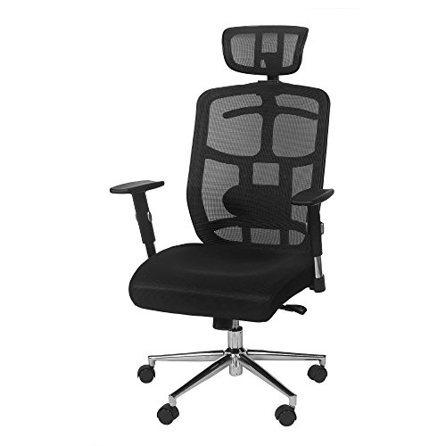 what is the best ergonomic high back mesh office chair with headrest
