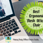 ergonomic mesh office chair reviews